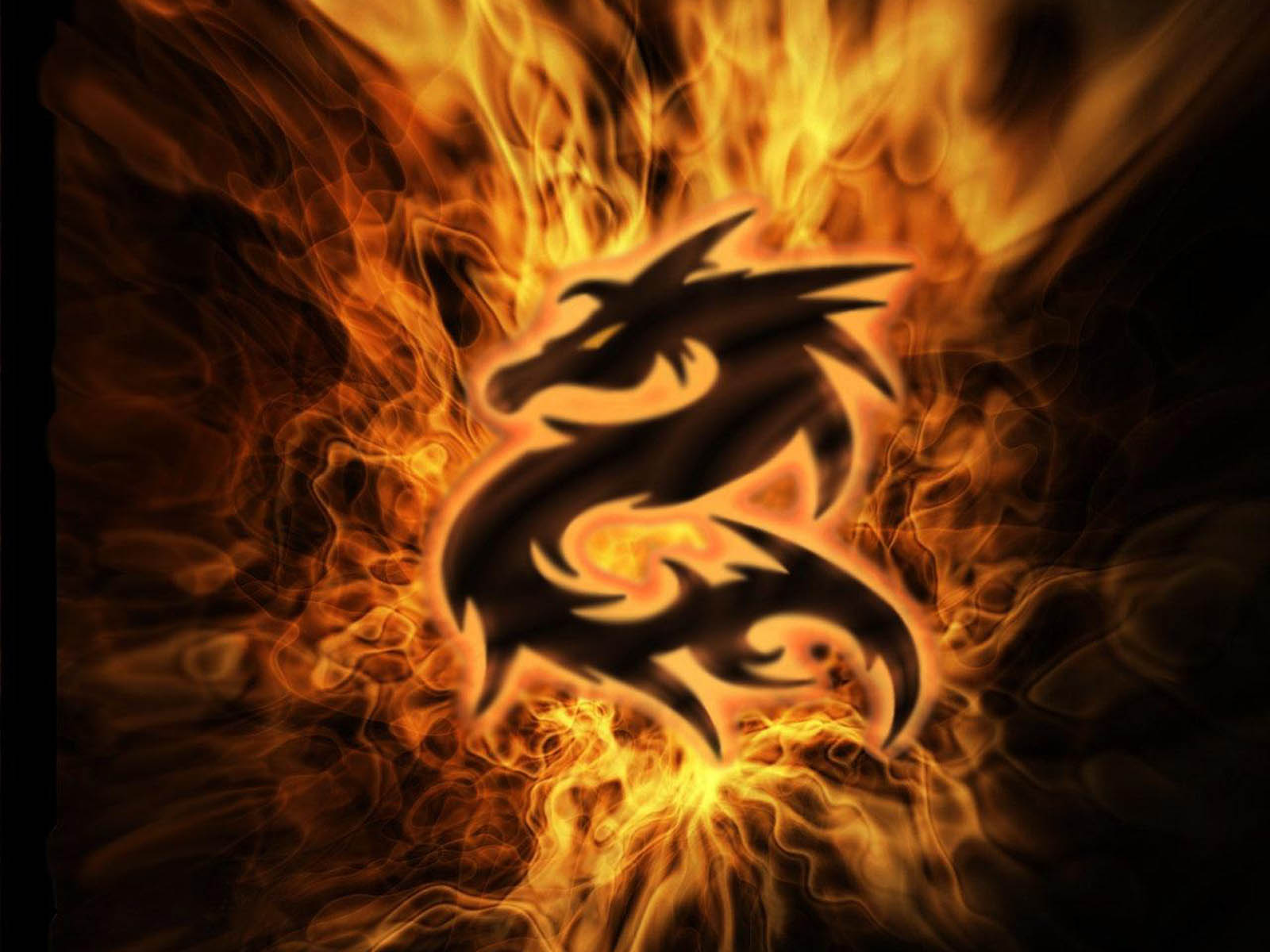 3d Dragon Wallpapers Full Hd Pictures