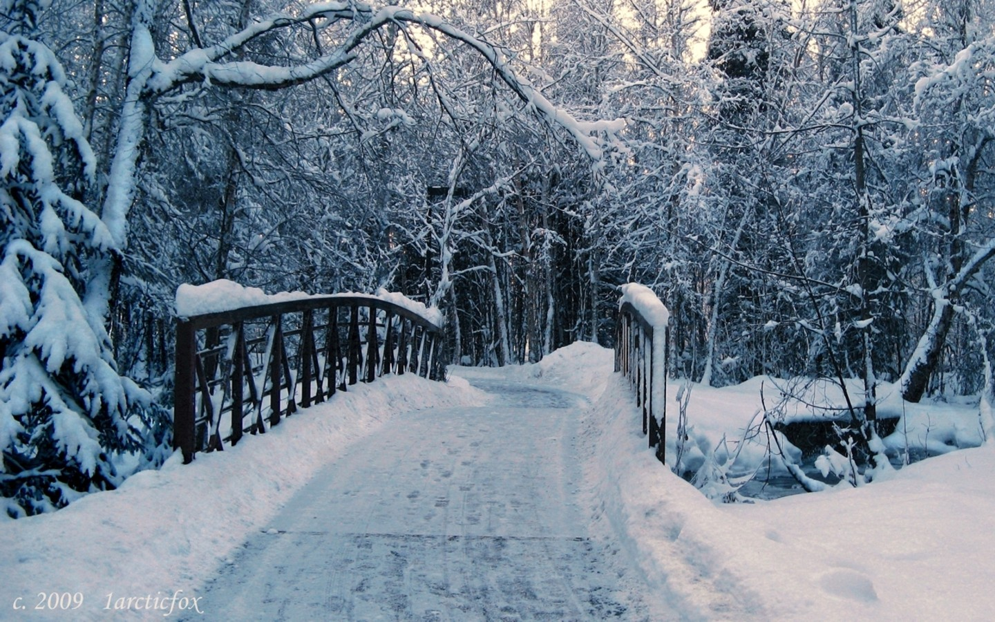 best winter wallpapers full hd pictures