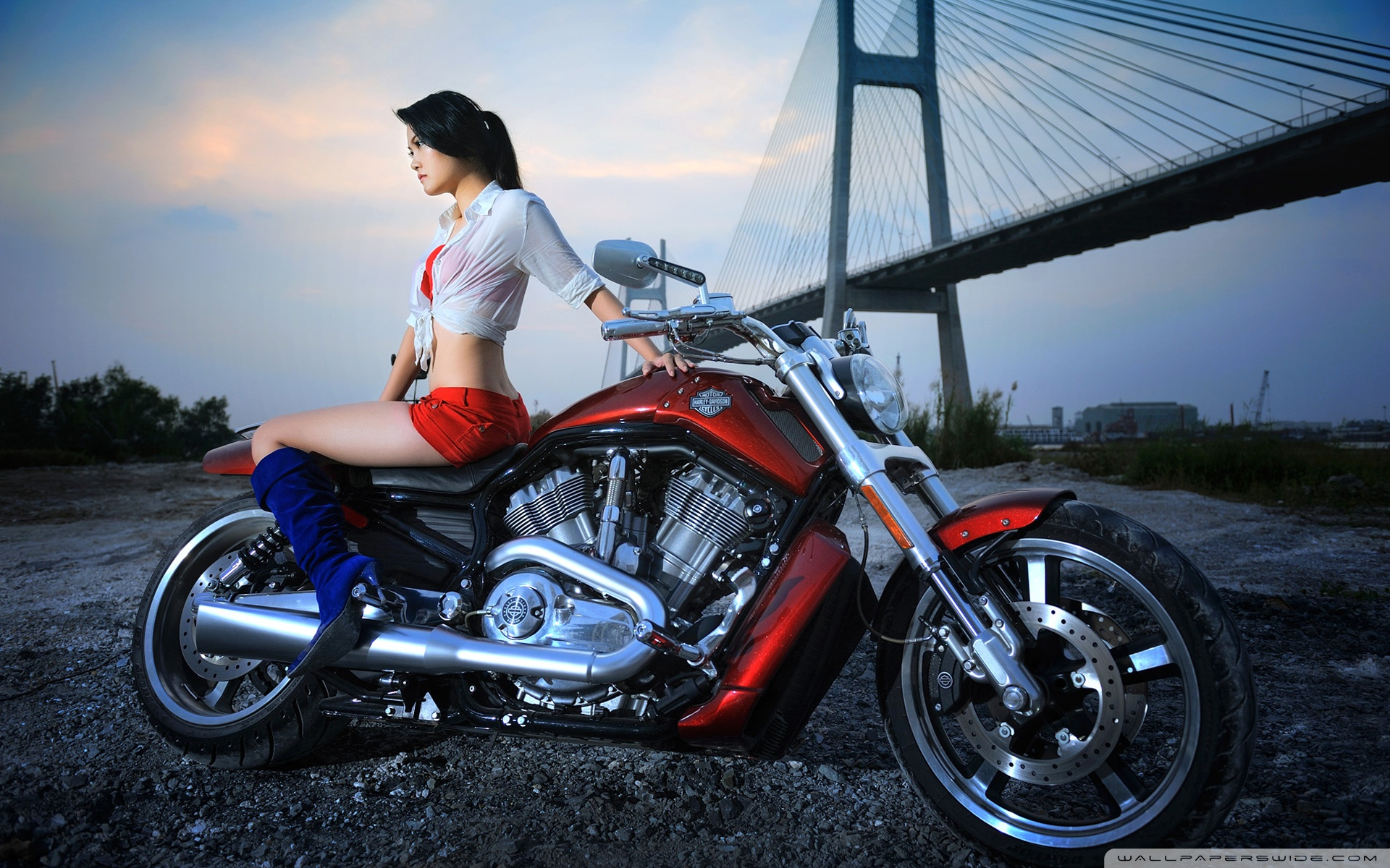 Girls and bikes wallpapers nude babes and motorcycles