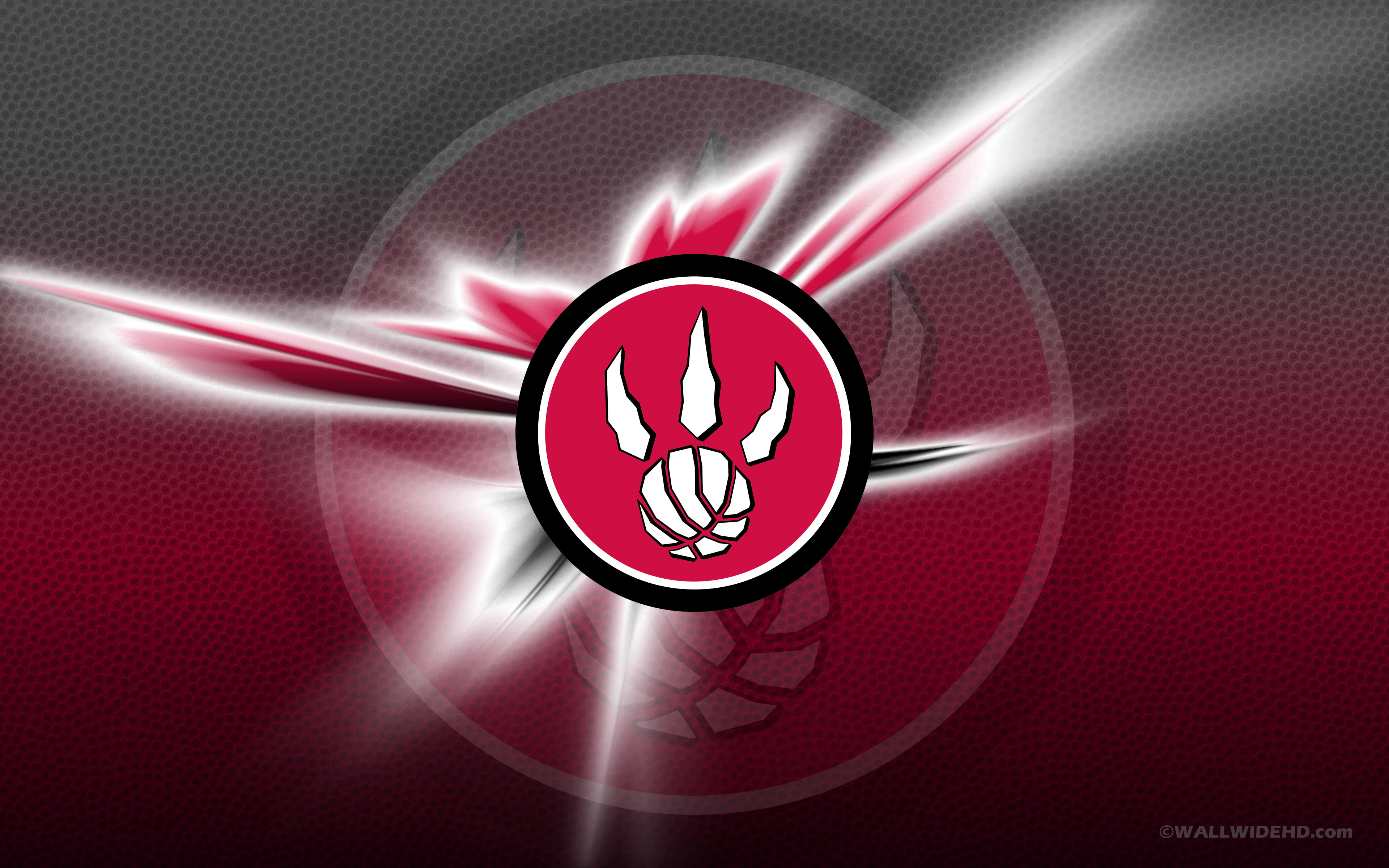 toronto raptors wallpapers full hd pictures