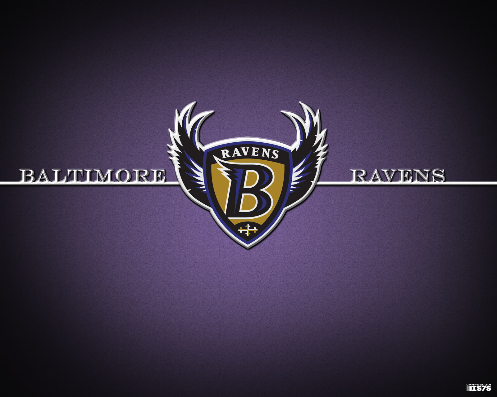 baltimore ravens wallpapers full hd pictures