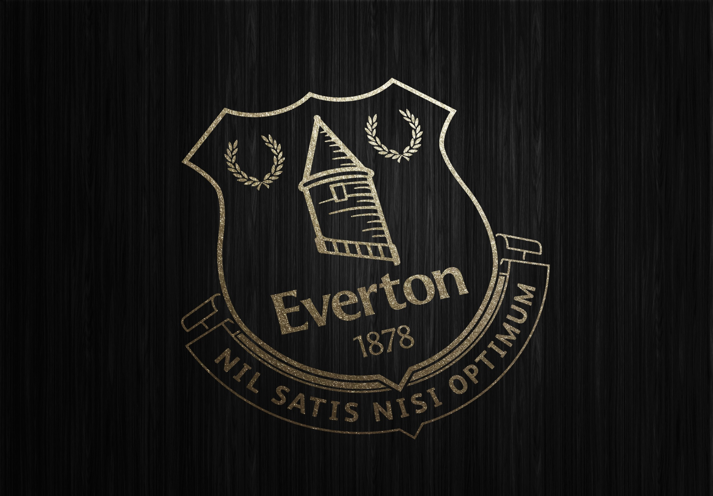 Everton HD Wallpaper   Full HD Pictures