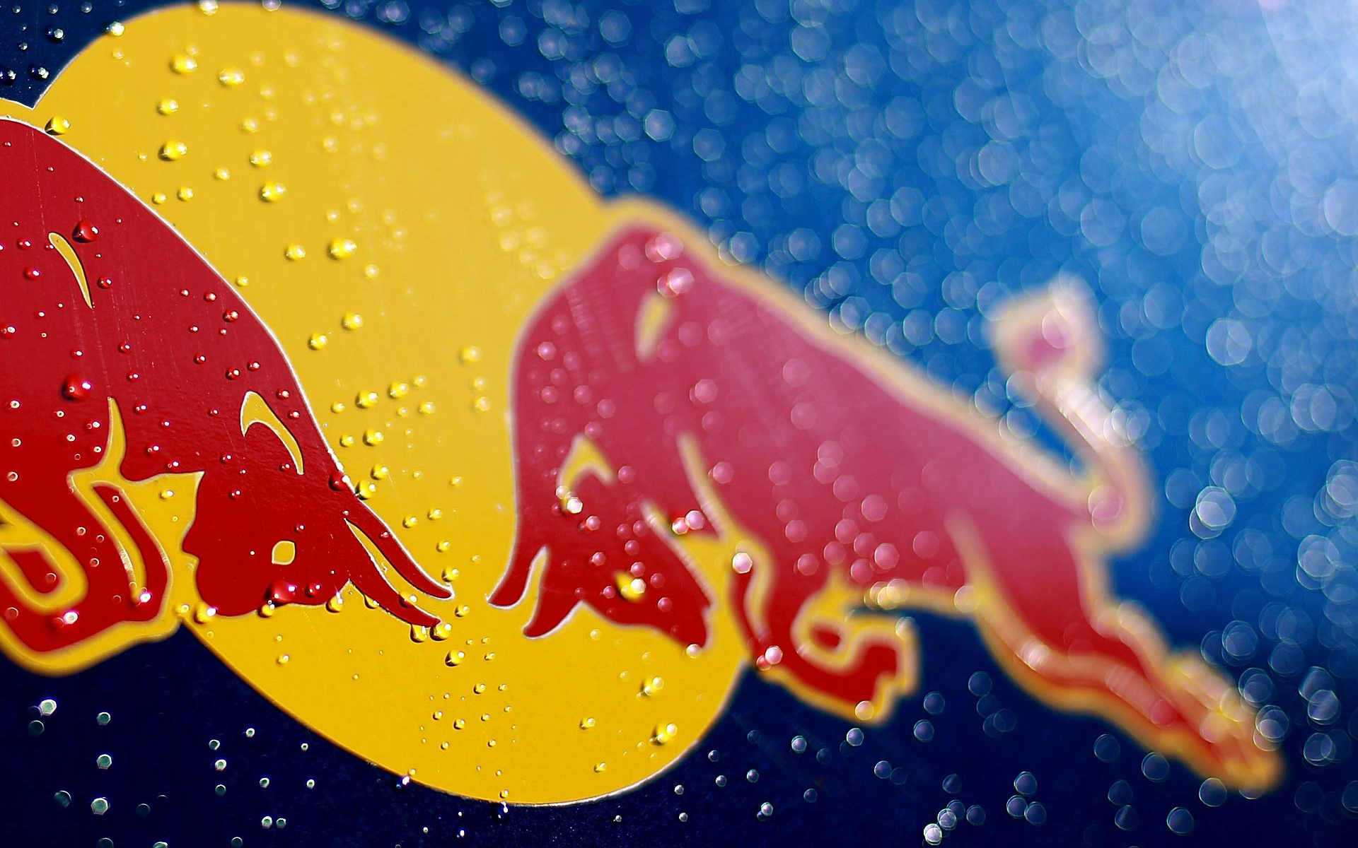 Excellent Red Bull Wallpaper