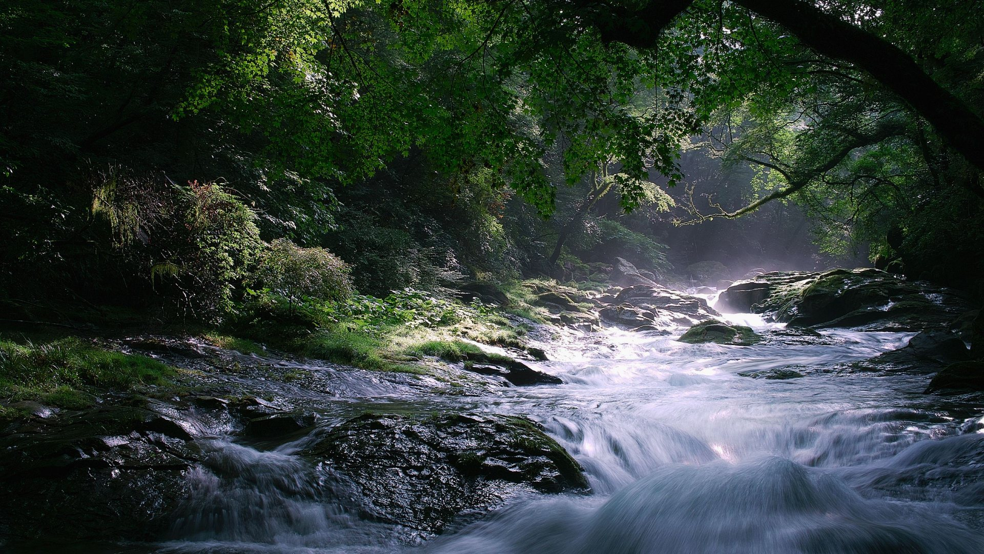 Excellent river wallpapers full hd pictures - Wallpaper pictures ...