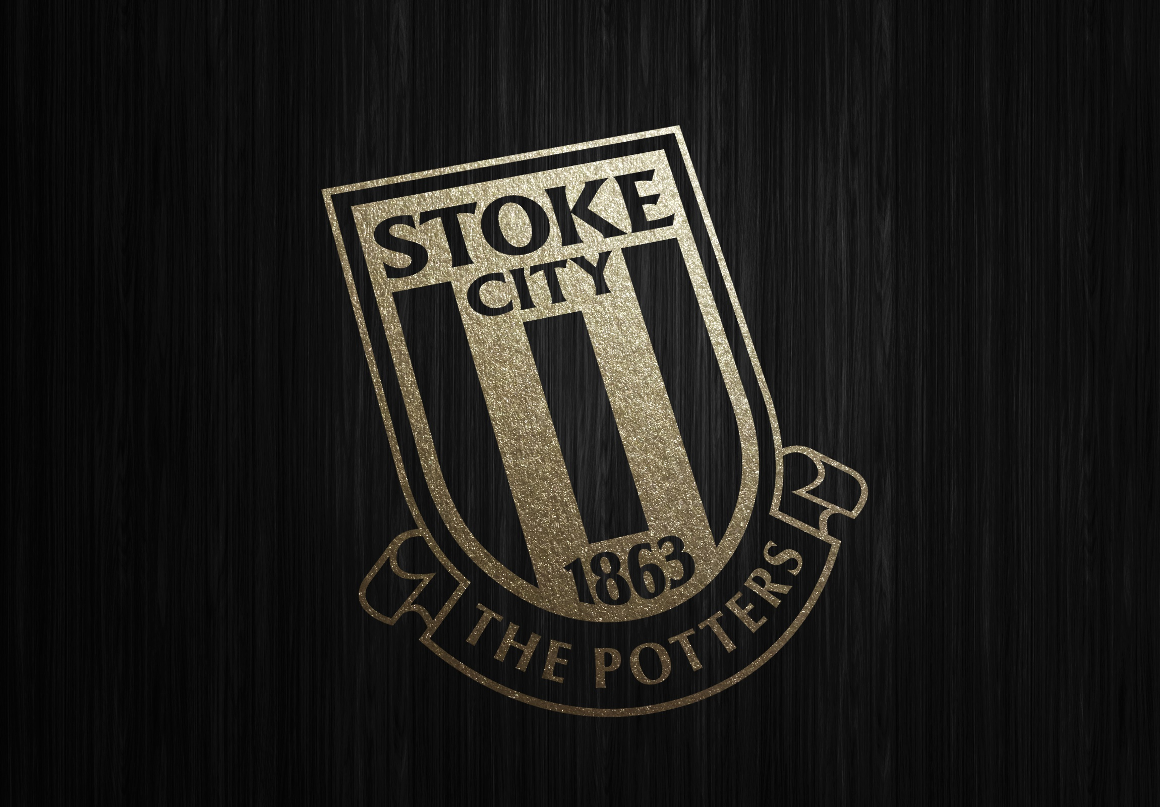 Stoke City Home Games