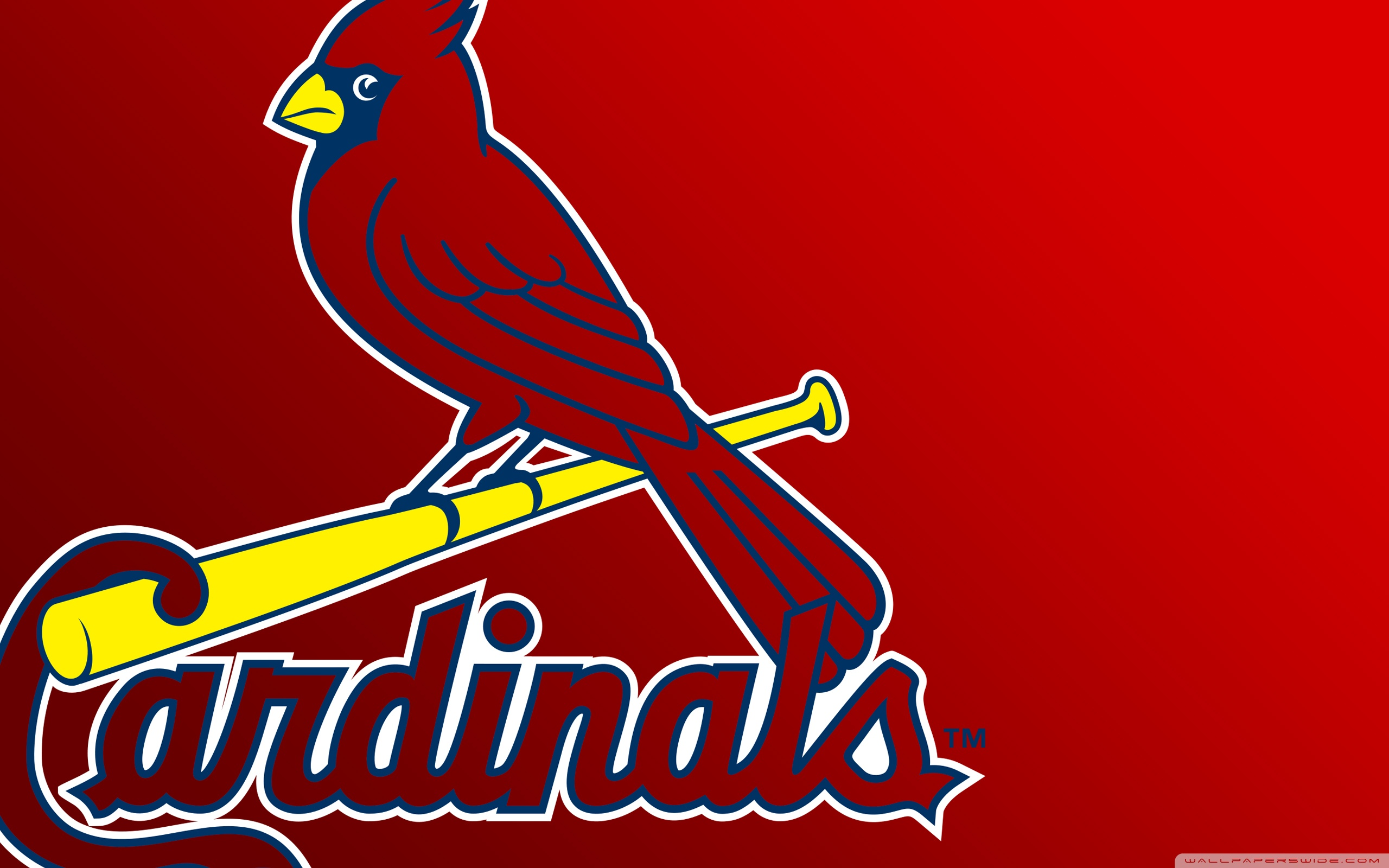 stlouis cardinals wallpapers hd full hd pictures