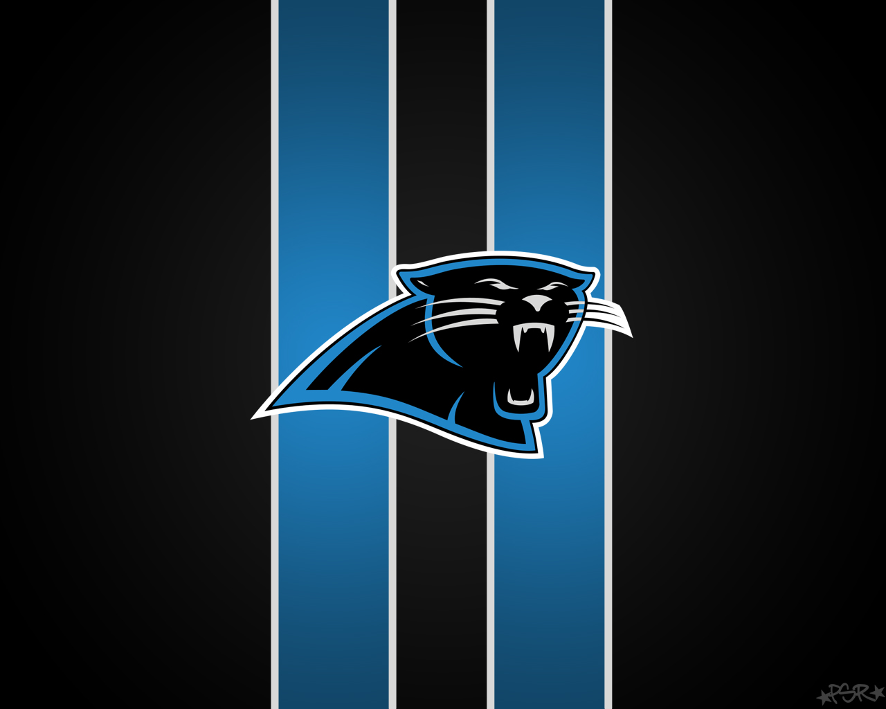 carolina panthers wallpaper hd full hd pictures