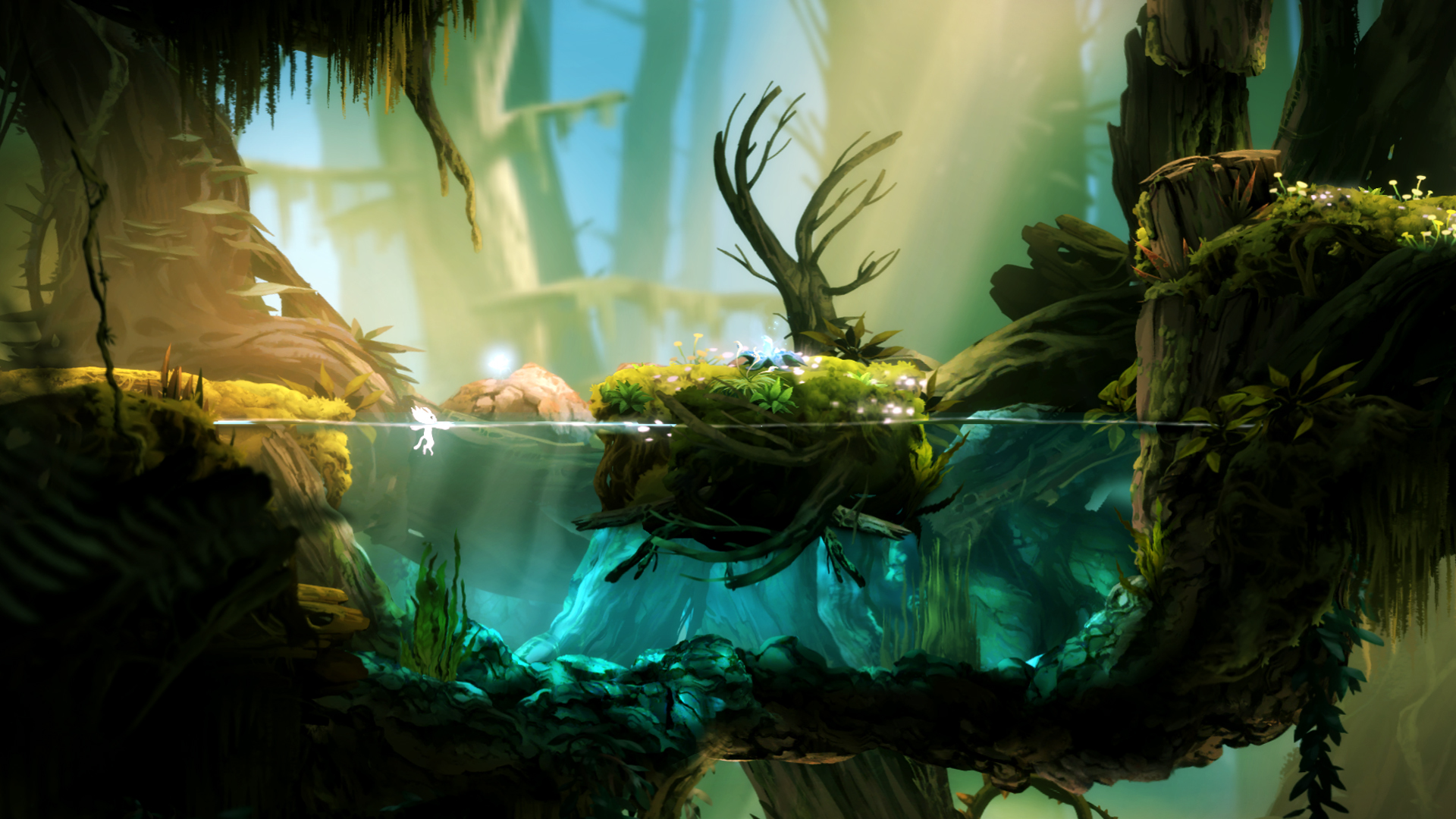 Magnificent Ori And The Blind Forest Wallpaper