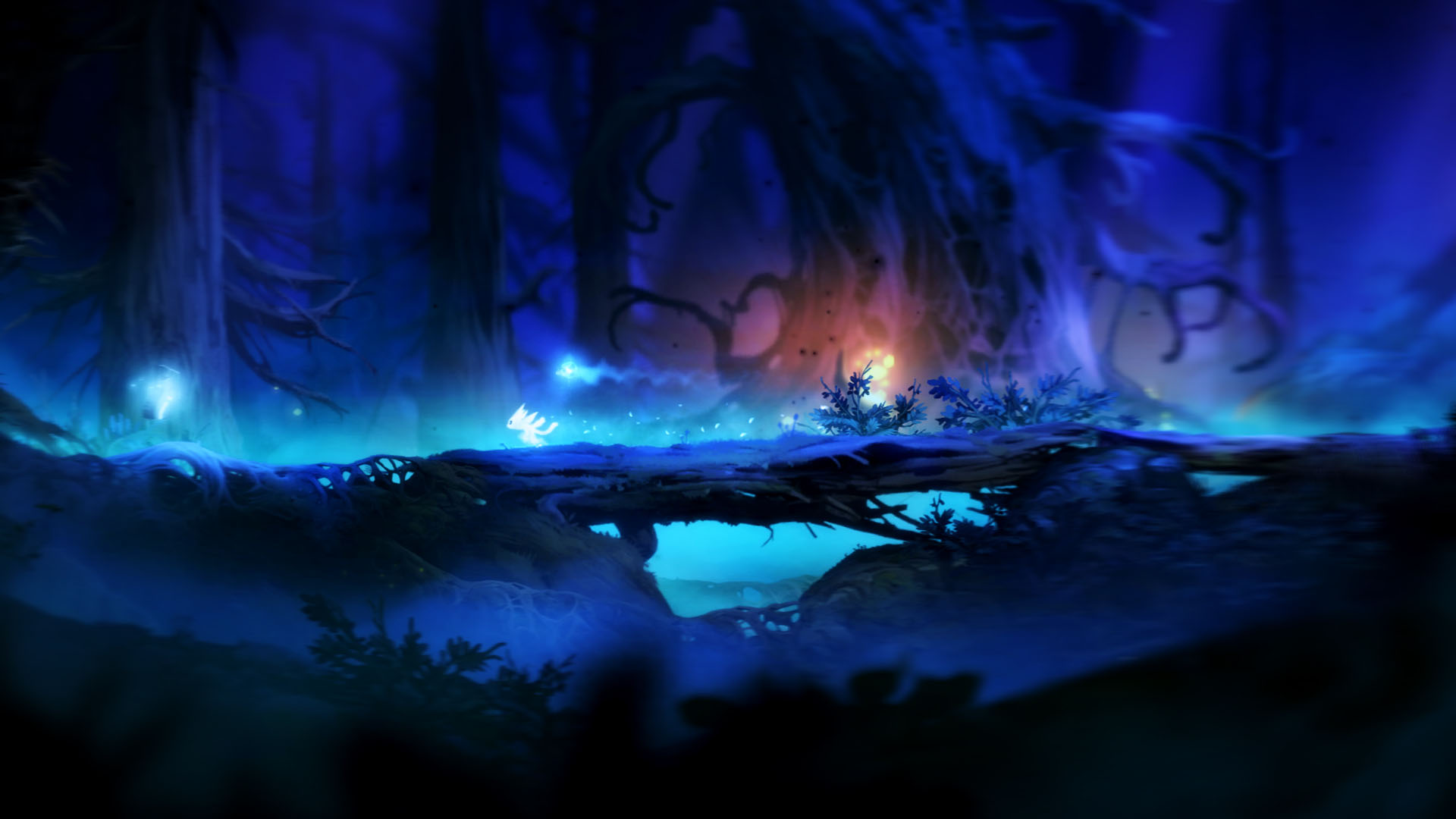Special Ori And The Blind Forest Wallpaper