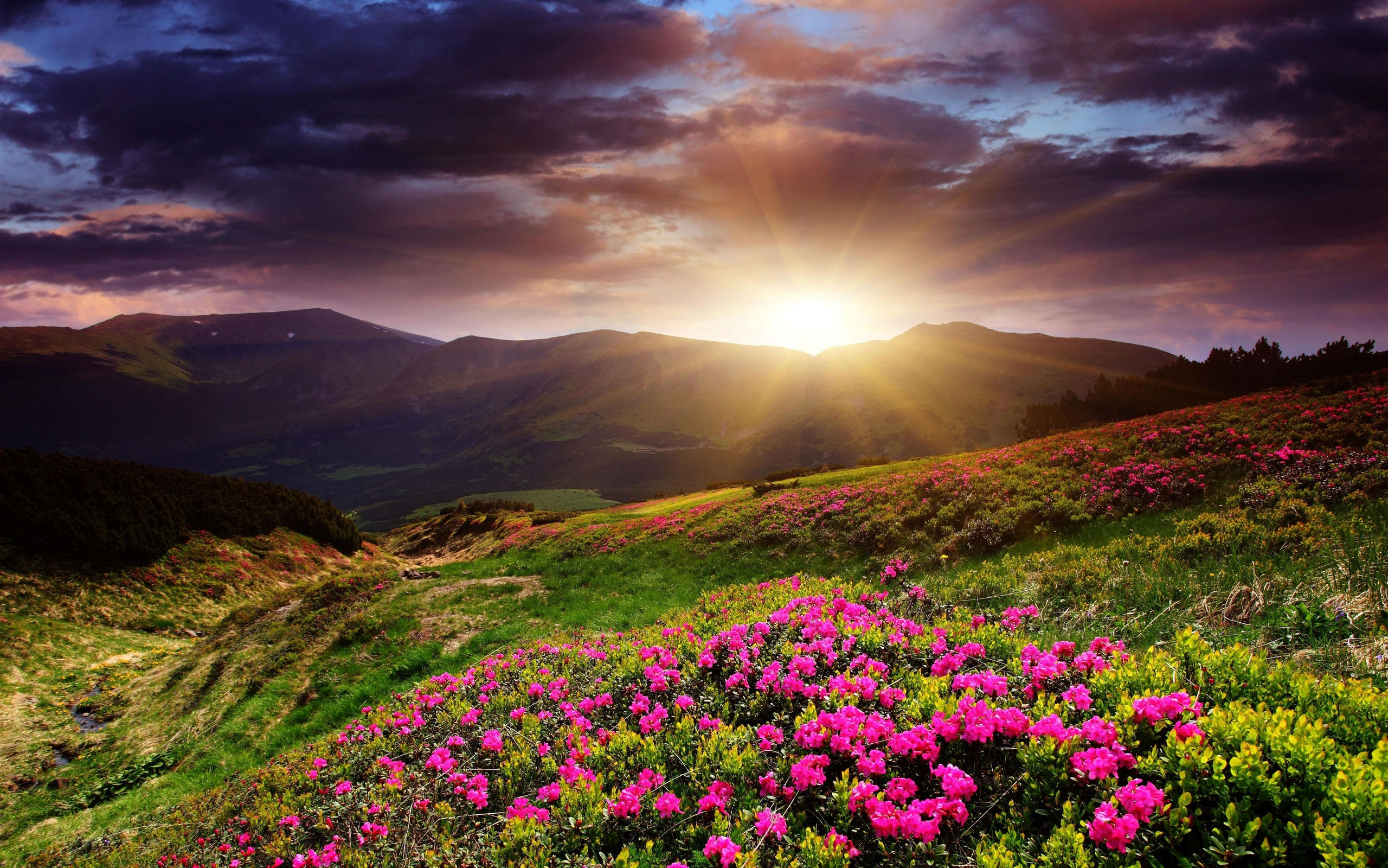 beautiful mountains sunrise wallpaper - photo #27