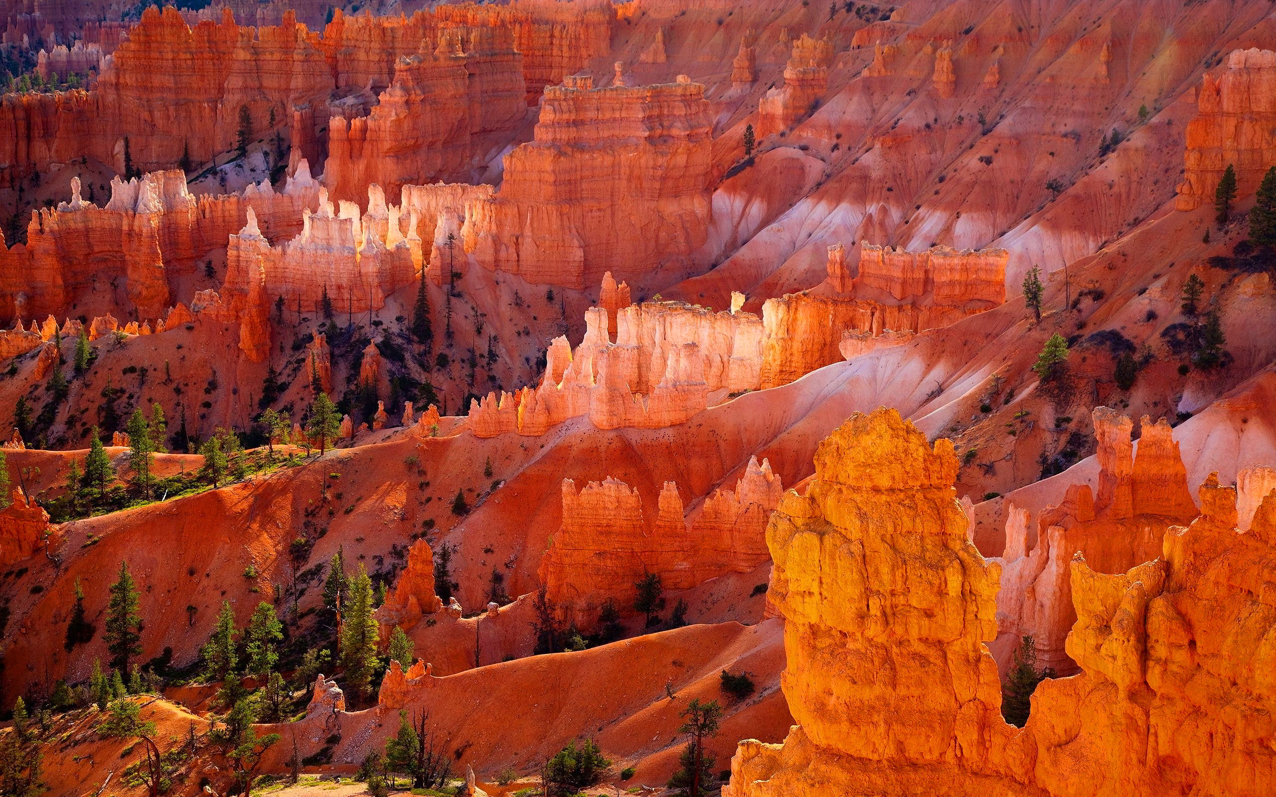 Great Bryce Canyon National Park Wallpaper Full Hd Pictures