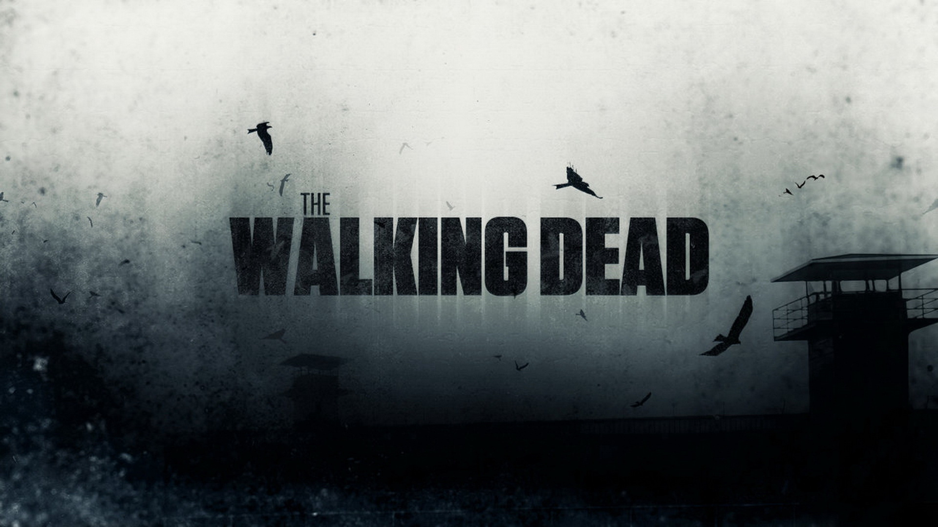 the walking dead season 6 wallpapers full hd pictures