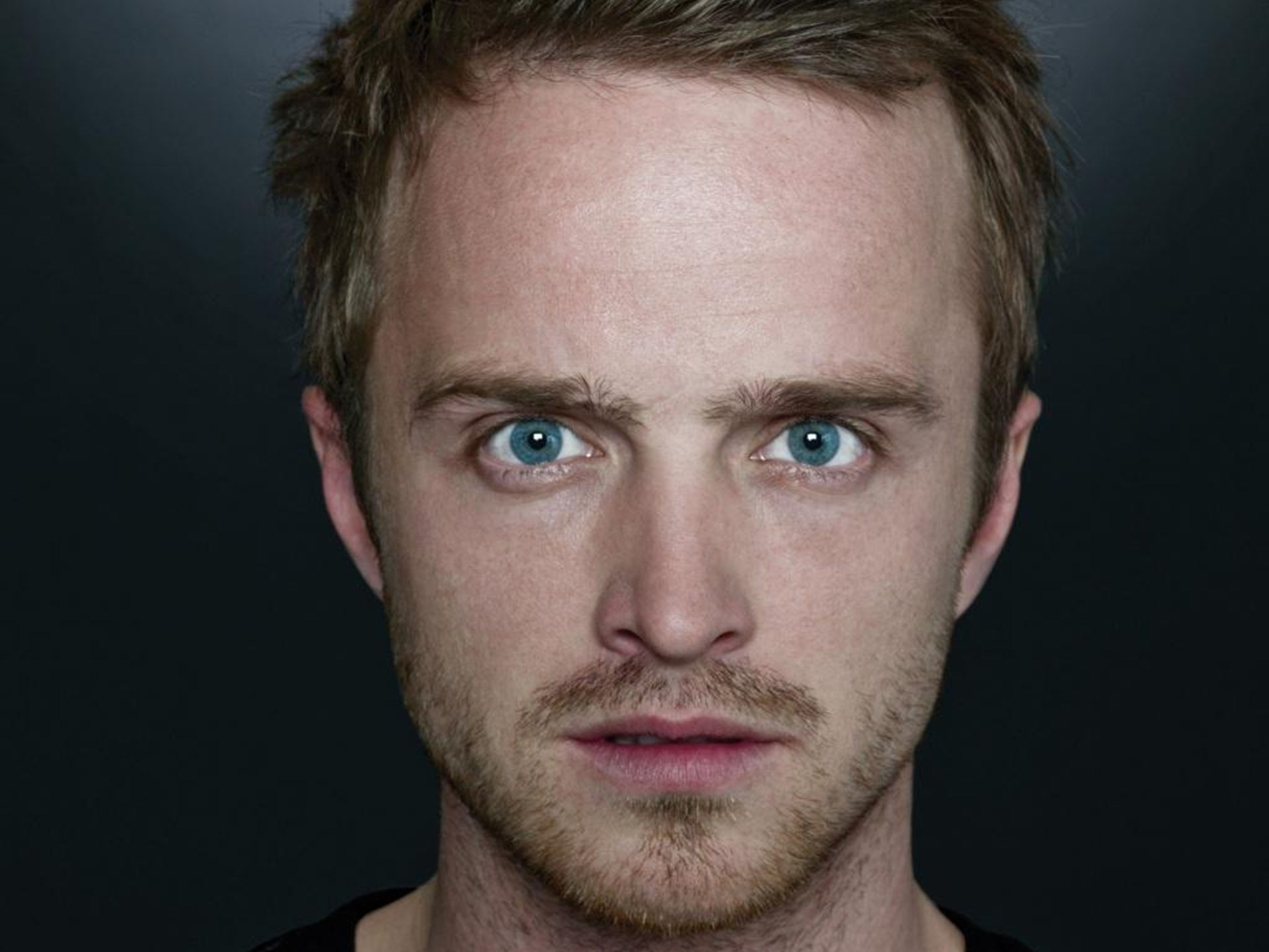 Aaron Paul images