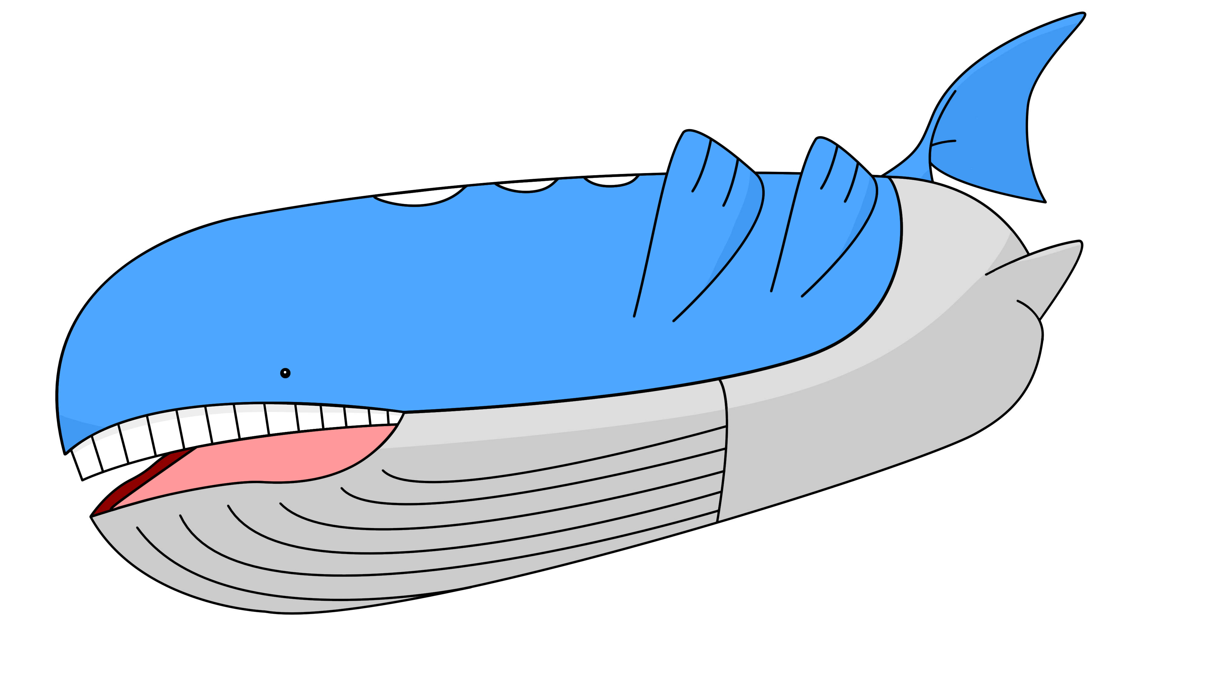 Wailord | Full HD Pictures Wailord Pokemon Size