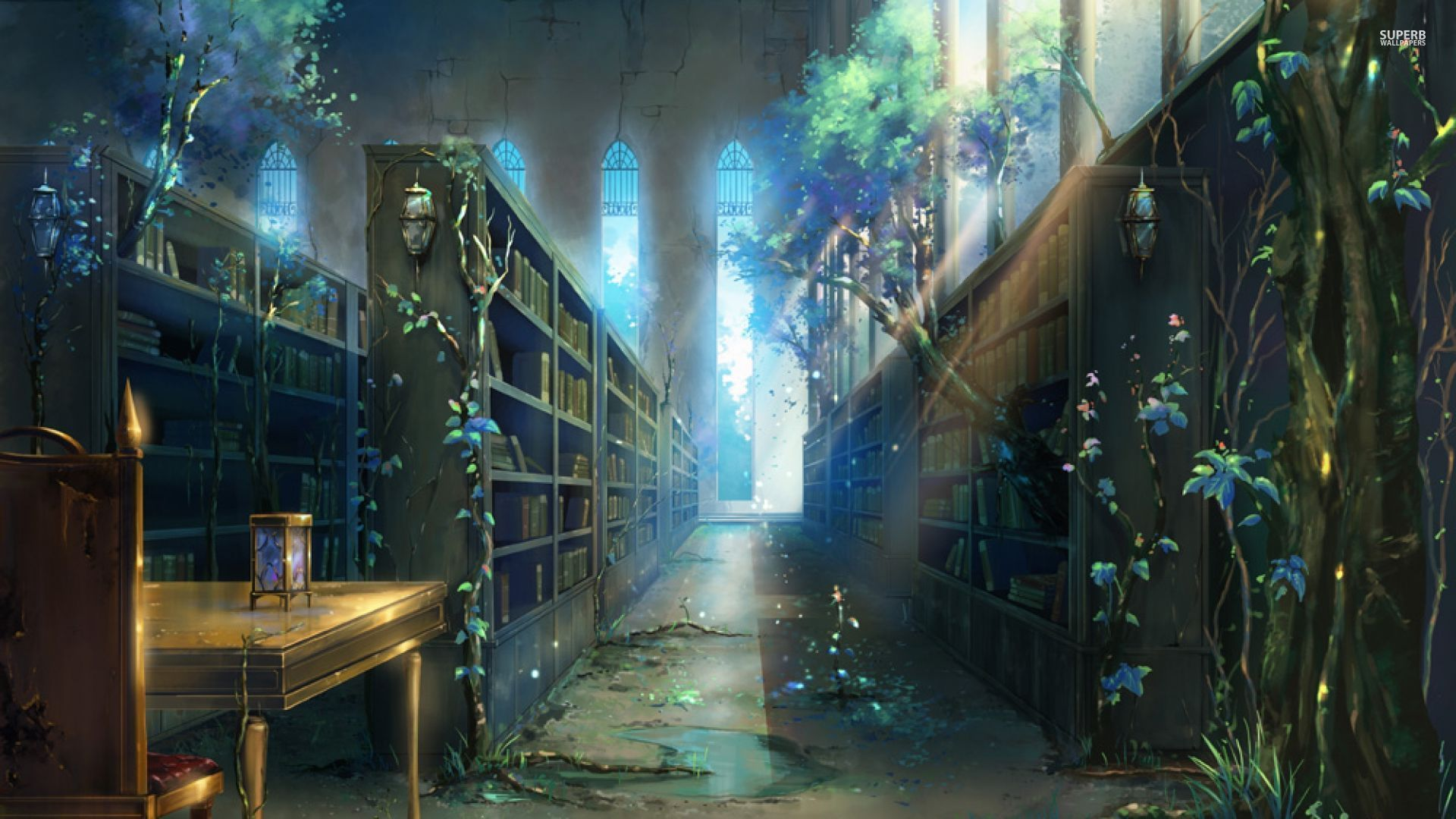 Fantasy Library Pictures | Full HD Pictures