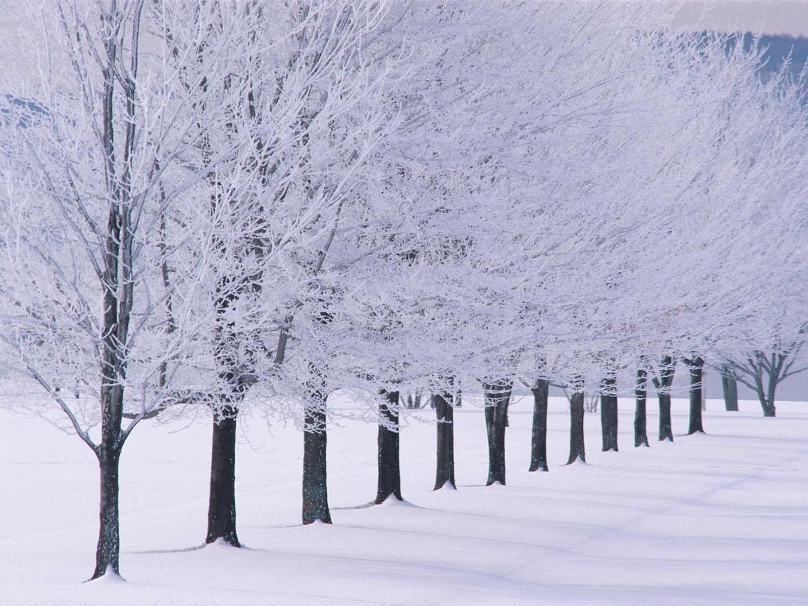 Winter Wallpapers On Pc Desktop Full Hd Pictures
