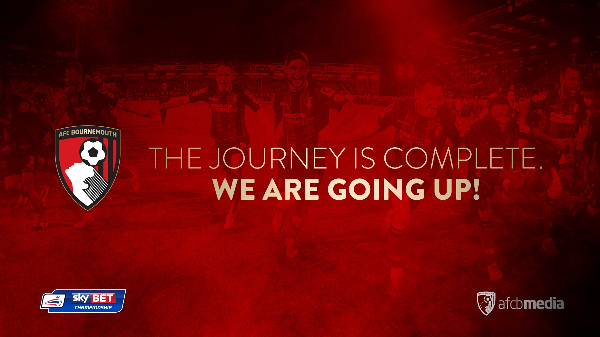 Hd Afc Bournemouth Wallpaper Full Hd Pictures