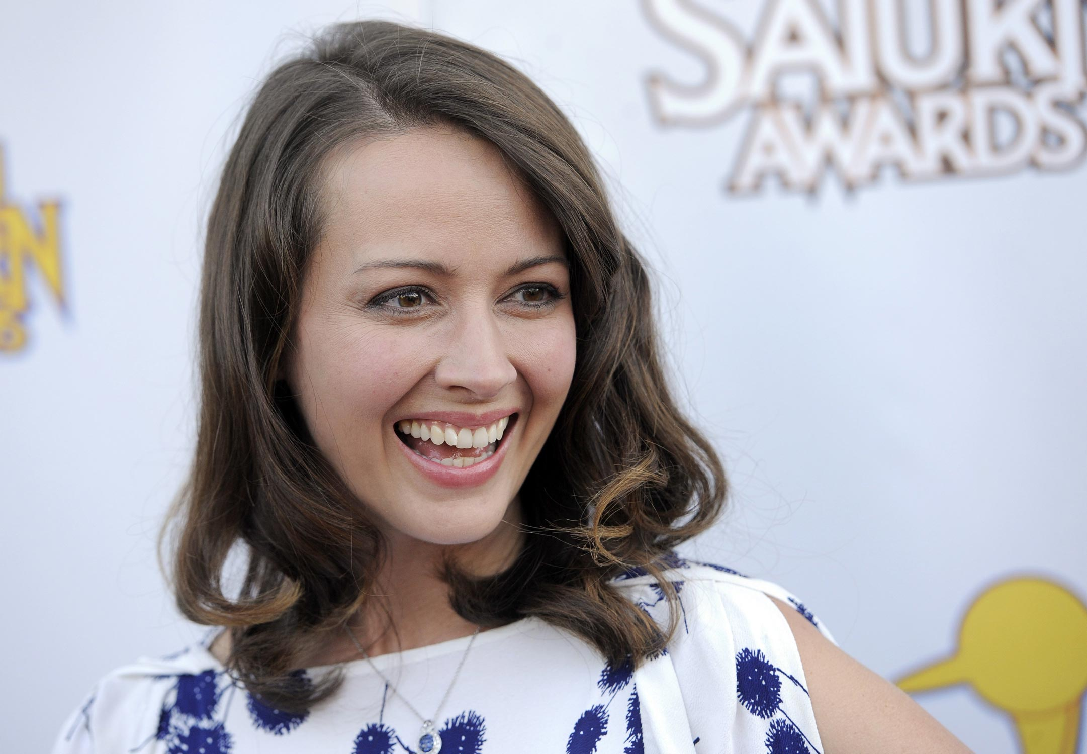Amy Acker Hot Pics grey wallpaper: amy acker hot wallpapers latest