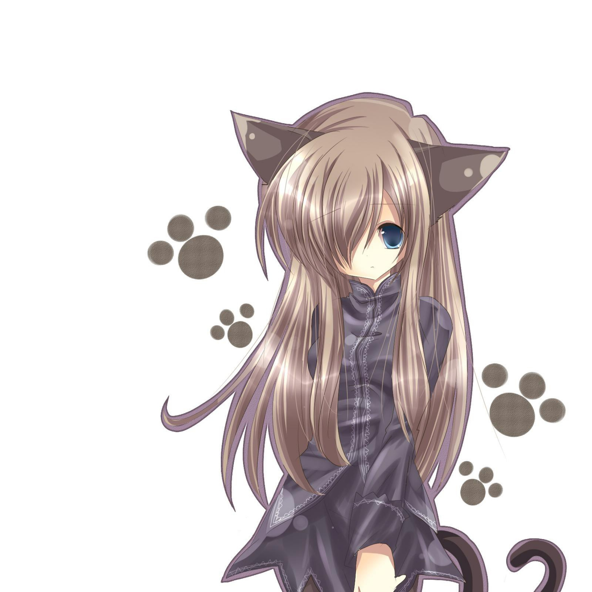 Anime Characters Catgirl : Anime cat girl full hd pictures