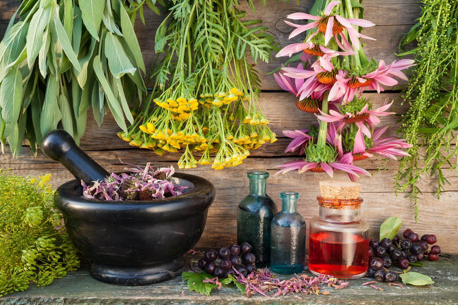 herbs as medicine Herbs at walgreens using herbs to address symptoms of illness and disease is one of the oldest forms of medicine known to man the scientific world is continually gaining new knowledge about the benefits of herbs.